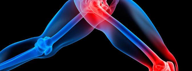 Ossos e articulações (Cortesia / R Della training)